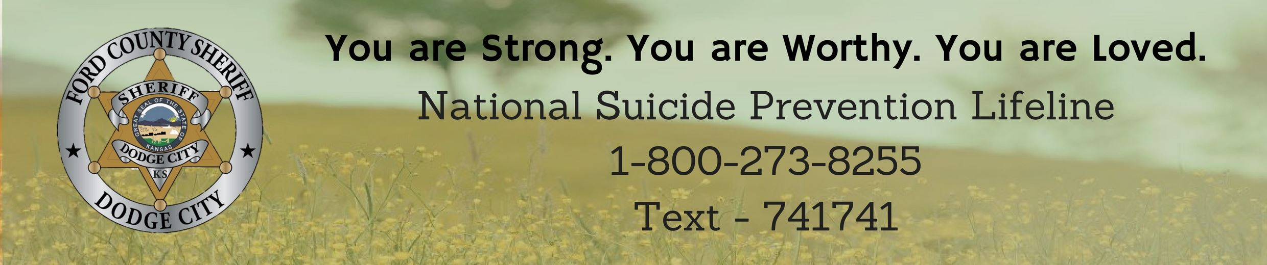 FOSO Web - Suicide Banner